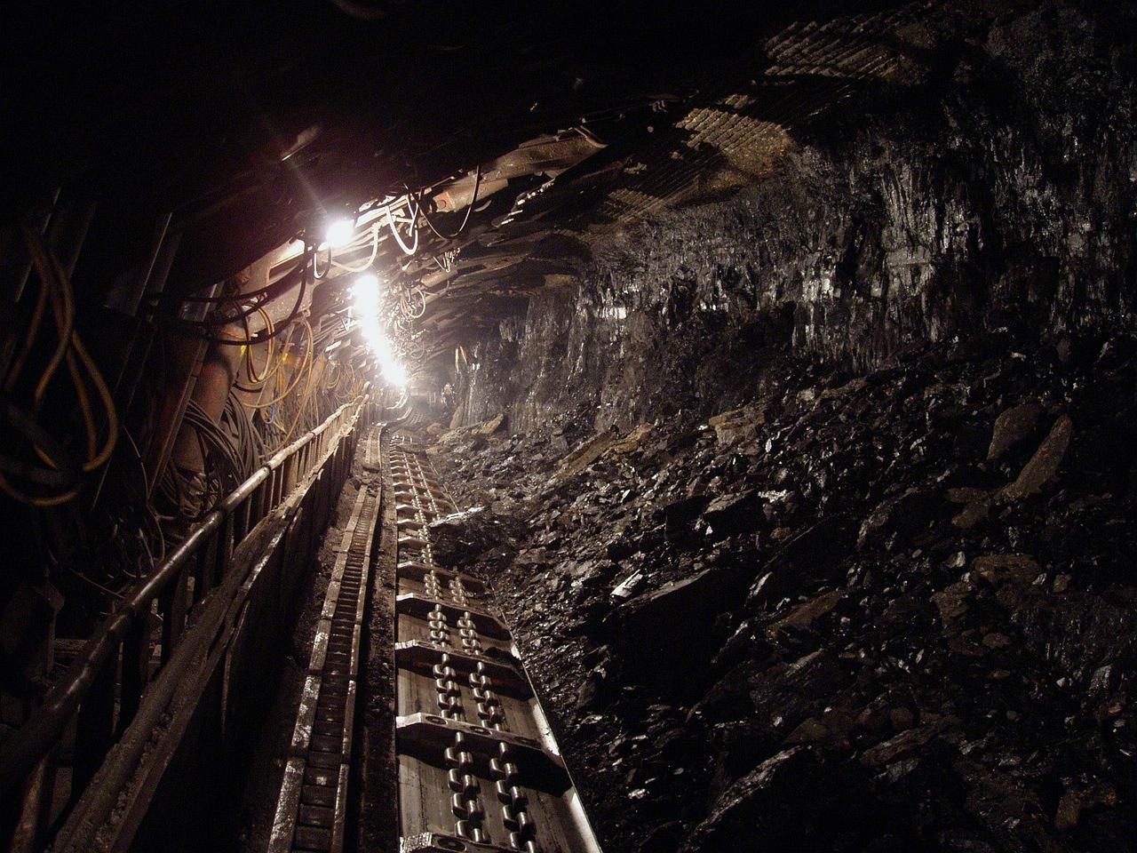 Jaki węgiel kupić?
